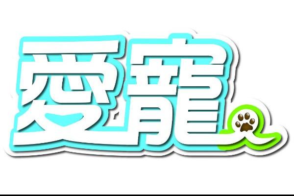 愛寵豆腐貓砂