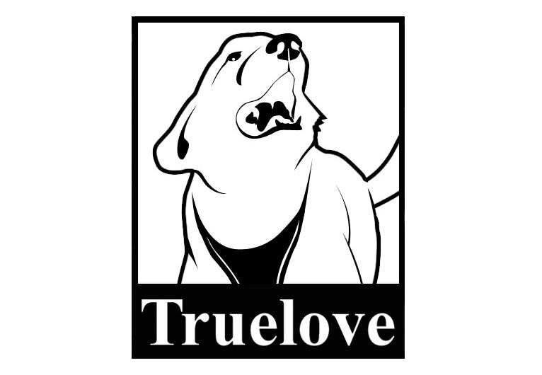 星惠Truelove