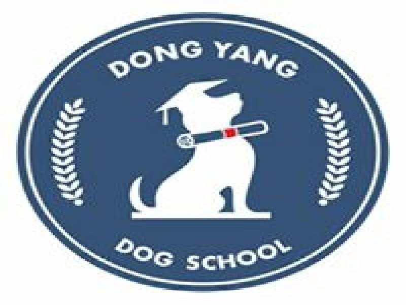 東洋狗學校