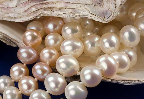 寶石皇后珍藏妳的愛高雅珍珠
