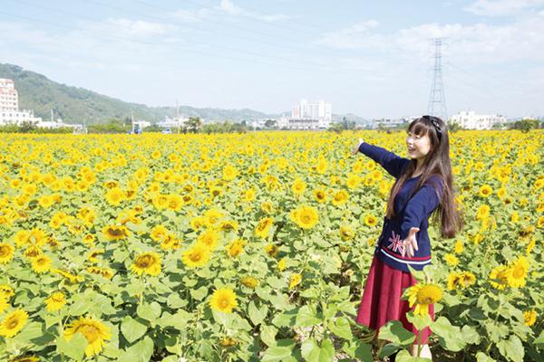 日本遊客大讚12景點 苑裡日南鐵道之旅