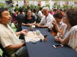 民眾踴躍參加品茶活動